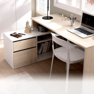 Oficina y Estudio